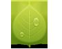 Przyroda i Ekologia